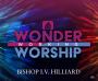 Wonder Working Worship - CD